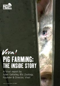 Be vegan! Campaign motive of the Pig Farming report 2016.